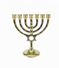 Menorah With Magen David