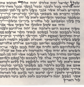 "Mezuzah Parchment Scroll (3.9""-3.9"")"