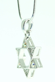 Shiny Magen David Necklace