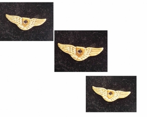 Silver &Gold IAF pilot wing