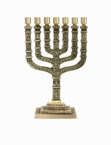 Emblem Of Israel Menorah