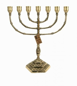 Menorah Of Mt. Zion