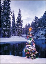 ER664HB - Holiday Tree and Lake<br>Boxed Set