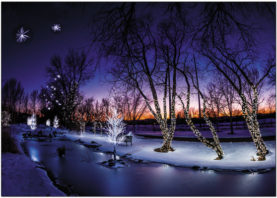 Hudson Gardens Christmas Lights Boxed Set Boxed Set Of 10 Greeting Cards White Envelopes