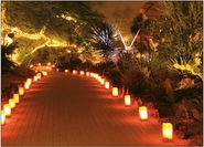 Luminaria & Holiday Lights
