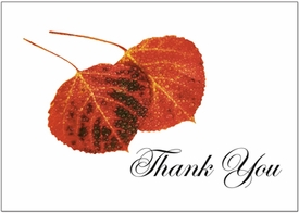 Autumn Aspen Leaves<br>Personalized Thank You Card