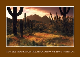 Lower Sonoran Sunrise<br>Personalized Thank You Card
