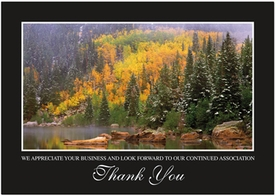 Misty Bear Lake<br>Personalized Thank You Cards