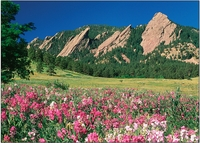 Personalize<br>Sweet Peas & Flatirons