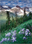 Personalized<br>Arapaho Pass & Columbine
