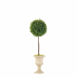 "24"" Topiary In White Planter"