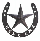 Lonestar Welcome Wall Decor