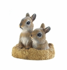 Peek-A-Boo Garden Bunnies Decor