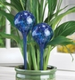Plant Watering Globe Stakes