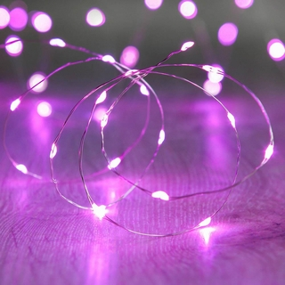 Purple 20 LED Copper Fairy Lights