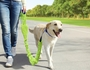 Reflective Dog Leash Set