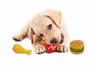 Squeaky Pet Toys 3 Pack