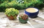 Vibrant Color Planter Trio