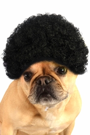 Black Afro Pet Wig - click to enlarge
