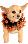 Black and Orange Jack-O-Lantern Pet Collar