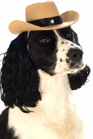 Brown Cowboy Hat for Pets - click to enlarge