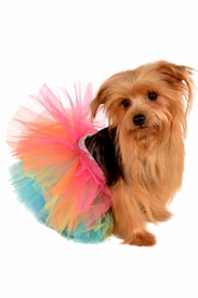 Neon Rainbow Tutu for Pets - click to enlarge