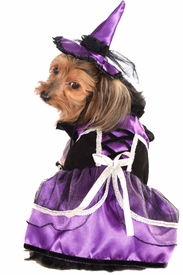 Purple Witch Pet Costume - click to enlarge