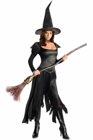 Wicked Witch of the West Adult Costume - click to enlarge