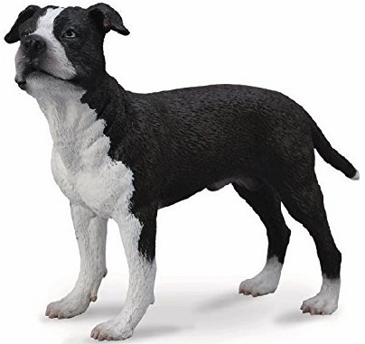 CollectA - American Staffordshire Terrier