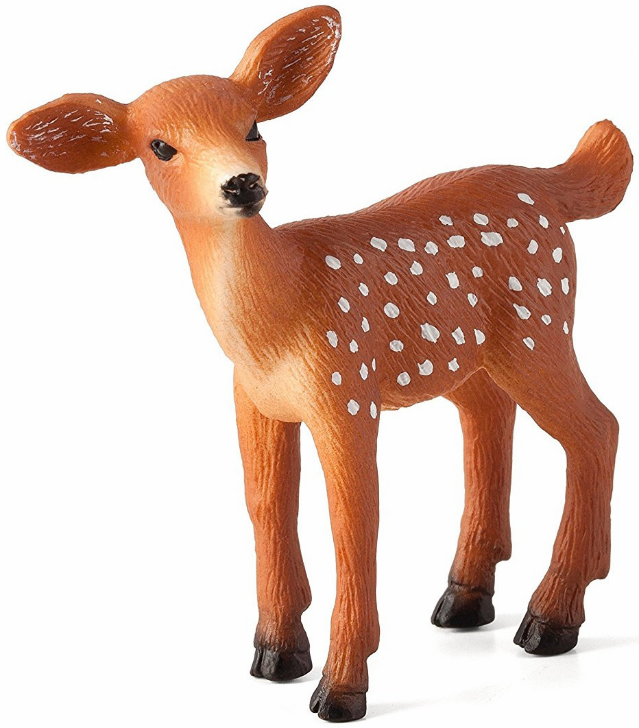 Mojo -  Woodland - White Tailed Deer - Fawn