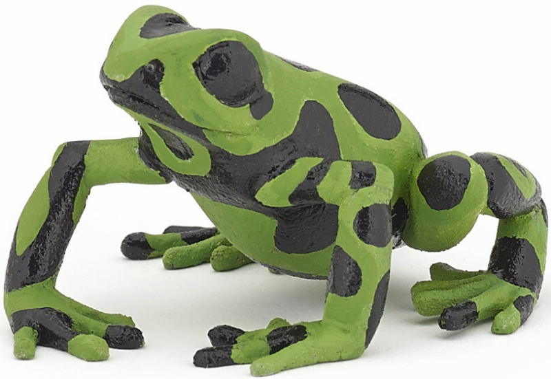 Papo - Equatorial Green Frog