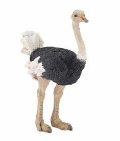 Papo - Ostrich