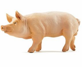 Papo - Pig - Boar