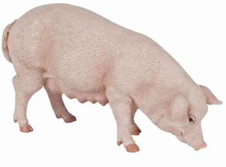Papo - Pig - Sow