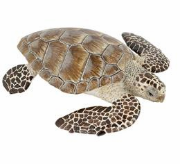 Papo - Turtle Cacouanne