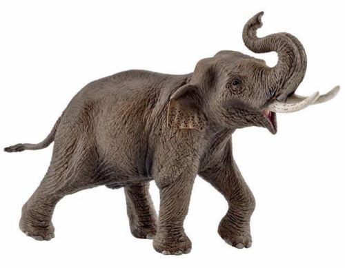 Schleich - Asian Elephant - Male - Exclusive