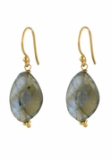 Labradorite Slab Earrings