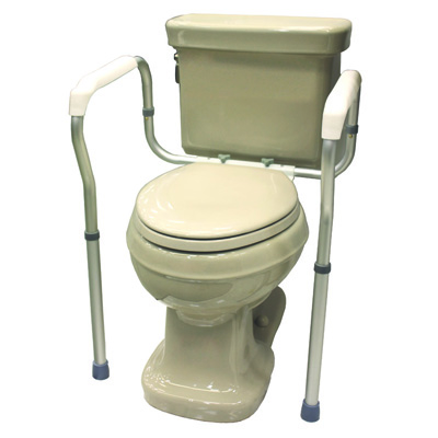 Roscoe Medical Toilet Safety Frame Color: Gray ROS-TSF4