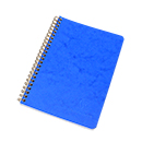 Clairefontaine Basics Wirebound Notebook with Pockets - Medium, Blue, Lined