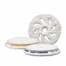 <b>RUPES BigFoot 100 mm  Microfiber Polishing Pad  3 Pack</b>