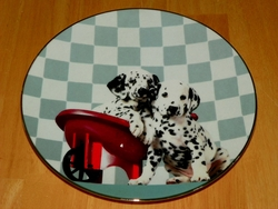 Collector Plate Check Out My Spots Those Delightful Dalmatians Hamilton 1996 Out of Stock