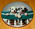 Collector Plate Naptime Already? Comical Dalmatians Coll Hamilton 1995