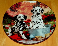 Collector Plate You Missed A Spot Comical Dalmatians Coll Hamilton 1995