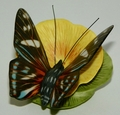 Franklin Mint Butterflies of the World Coll 1986 MANGROVE SKIPPER BUTTERFLY