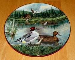 1986 Collector Plate The Pintail 1st Issue Jerner's Ducks Living With Nature