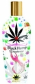 Black Hemp - 12X Accererator Lotion