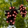 100 Micro Bullb 5-Cluster Burgundy Grapevine String Lights
