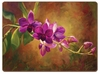 Purple Orchid Hardbacked Placemats