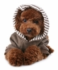 Just For You Puppy Hoodie