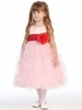 Satin and Ruffles Organza Dress